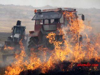 çekmegöl sazlık yangın